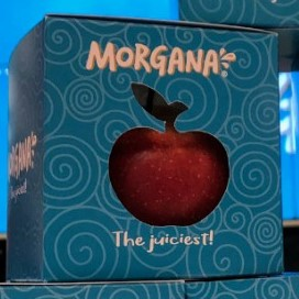 Warning For NOW: something seductive is being presented to us; the morgana apple!